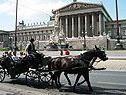 Wiens Fiaker-Fahrer als Studienobjekte
