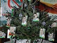 Der grün-weiße Weihnachtsbaum in Penzing