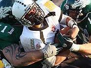 Dominante Teams der Saison 2010: Raiders und Dragons
