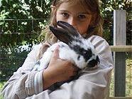 Kaninchenglück und Streichelspaß am Kinderbauernhof der Stadt Wien