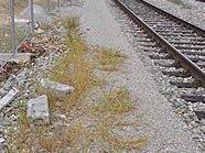 Der Tatort auf der Ostbahn-Strecke in Favoriten