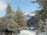 Der Winter hält nun wirklich Einzug in Österreich.