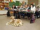 Das Projekt Schulhund hat sich bisher sehr bewährt.