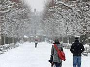 Geht sich am 24. Dezember ein Weihnachtsspaziergang im verschneiten Schönbrunn aus?