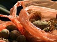 Im Gemeinderat wird es auch um ein mögliches Plastiksackerlverbot gehen.