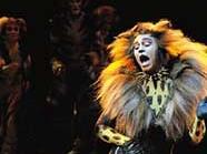 """Nach rund 20 Jahren ist das Musical """"Cats"""" zurück in Wien."""