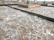 In der Hauptkläranlage wurden 2010 220 Mrd. Liter Abwasser gereinigt.
