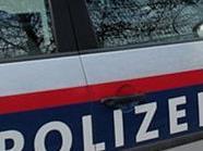 Die Polizei erwischte die Diebe in 1150 Wien auf frischer Tat.