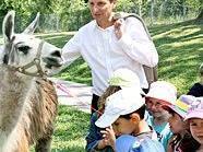 Stadtrat Oxonitsch freute sich gemeinsam mit den Kids über den Besuch der Lamas.