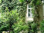 """Für die Aktion """"Naturnahe Grünoase"""" ist noch bis Ende August Zeit."""