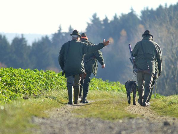 Jäger in Niederösterreich schwer verletzt