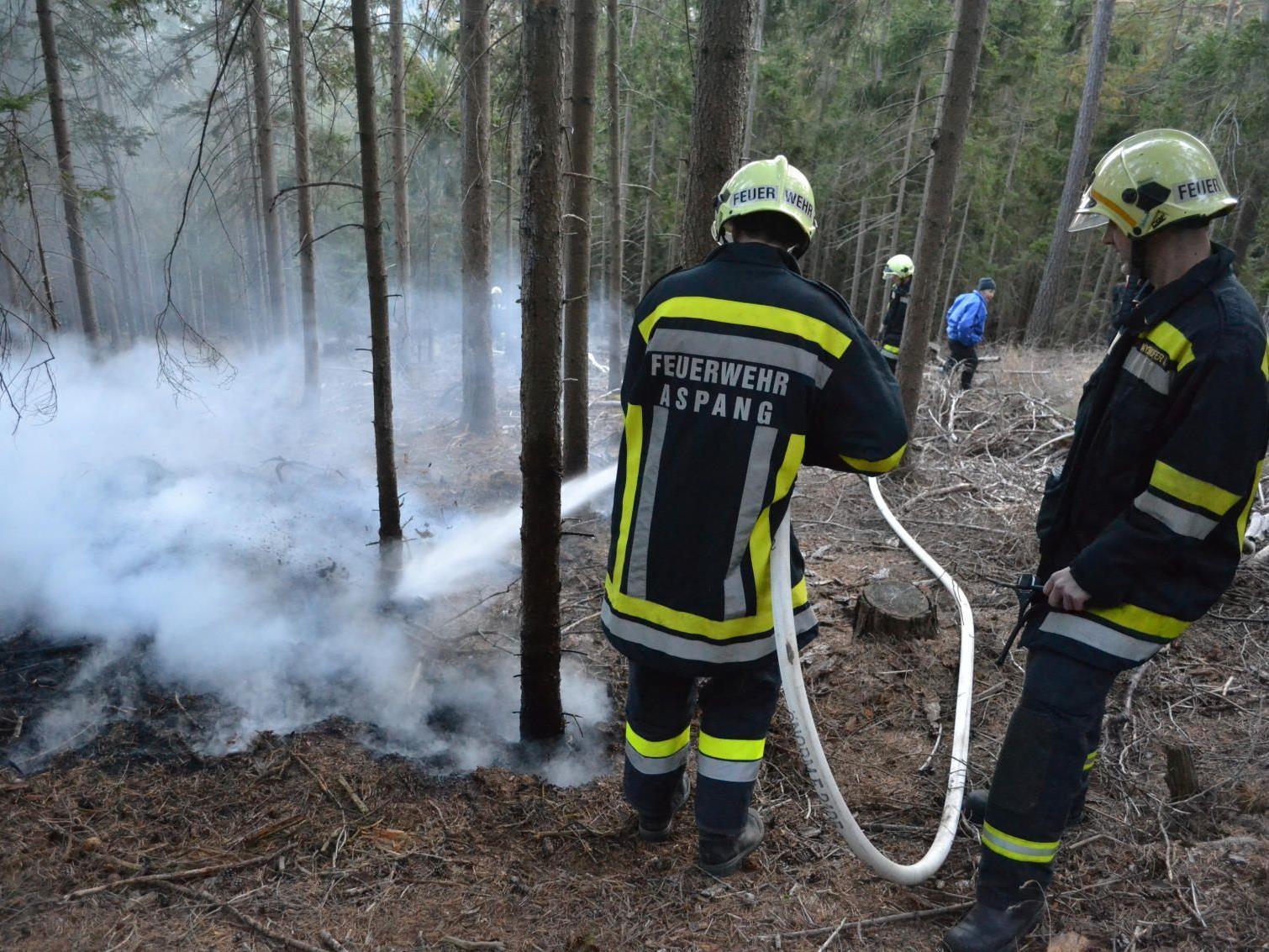 100 Meter Löschleitung waren notwendig, um den Brandherd zu erreichen.