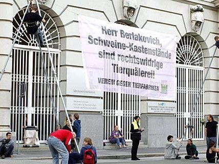 Die Tierschützer der VGT blockieren die Landwirtschaftskammer in St. Pölten. Das war nicht die erste Störaktion.
