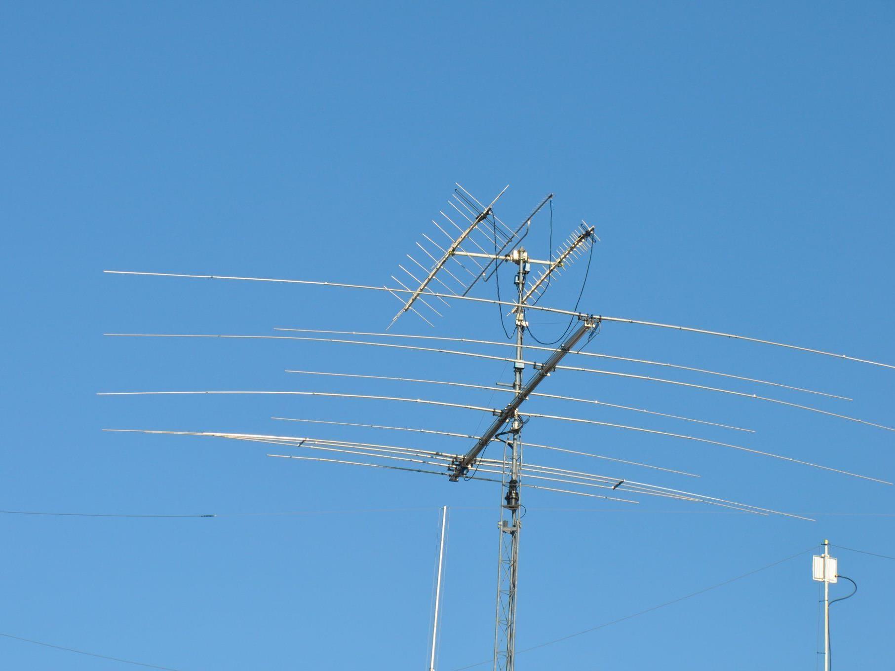 Scharfe Antennen hatte ein Wiener Polizist - in jeder Beziehung!