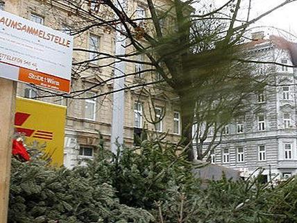 Jede Menge Christbaumsammelstellen werden in Wien von der MA48 angeboten