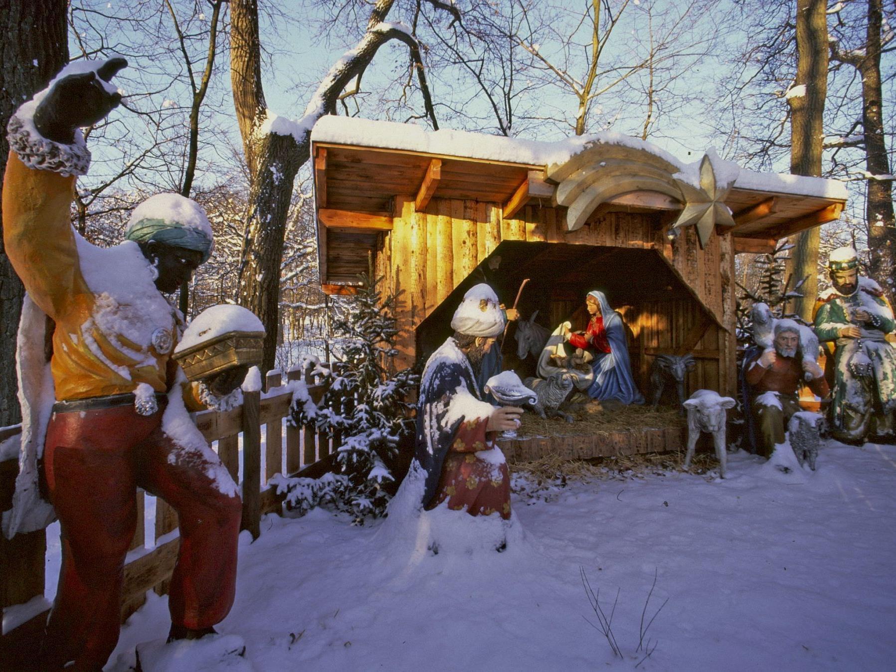 Winterliche Spaziergänge: Lainzer Tiergarten öffnet in den Weihnachtsferien die Tore