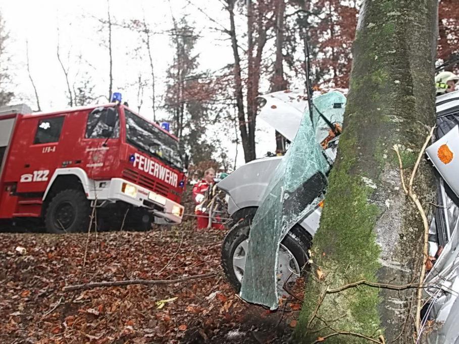 Das Auto wurde regelrecht um den Baum gewickelt.