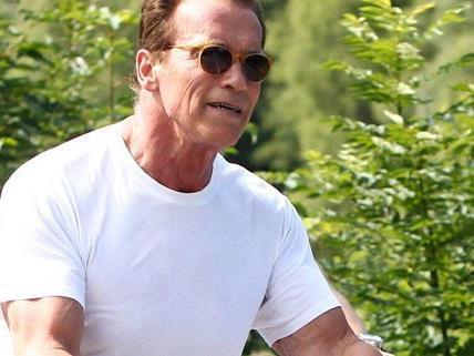 Arnild Schwarzenegger kommt nach Österreich