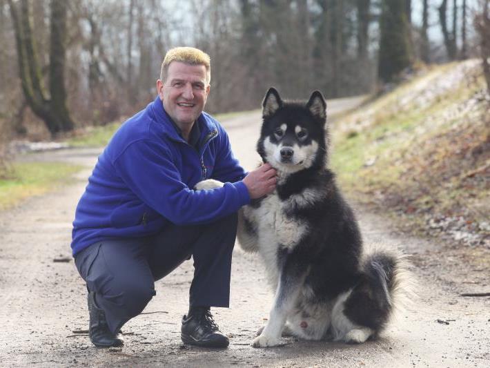 Albert Rabatscher mit einem Huskie des Tierschutzheimes in Dornbirn.
