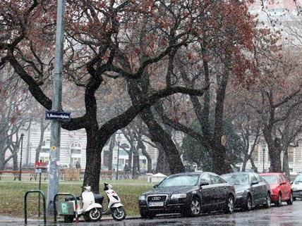 Ganz schön nass war er: Der erste Schnee am Freitag in Wien.