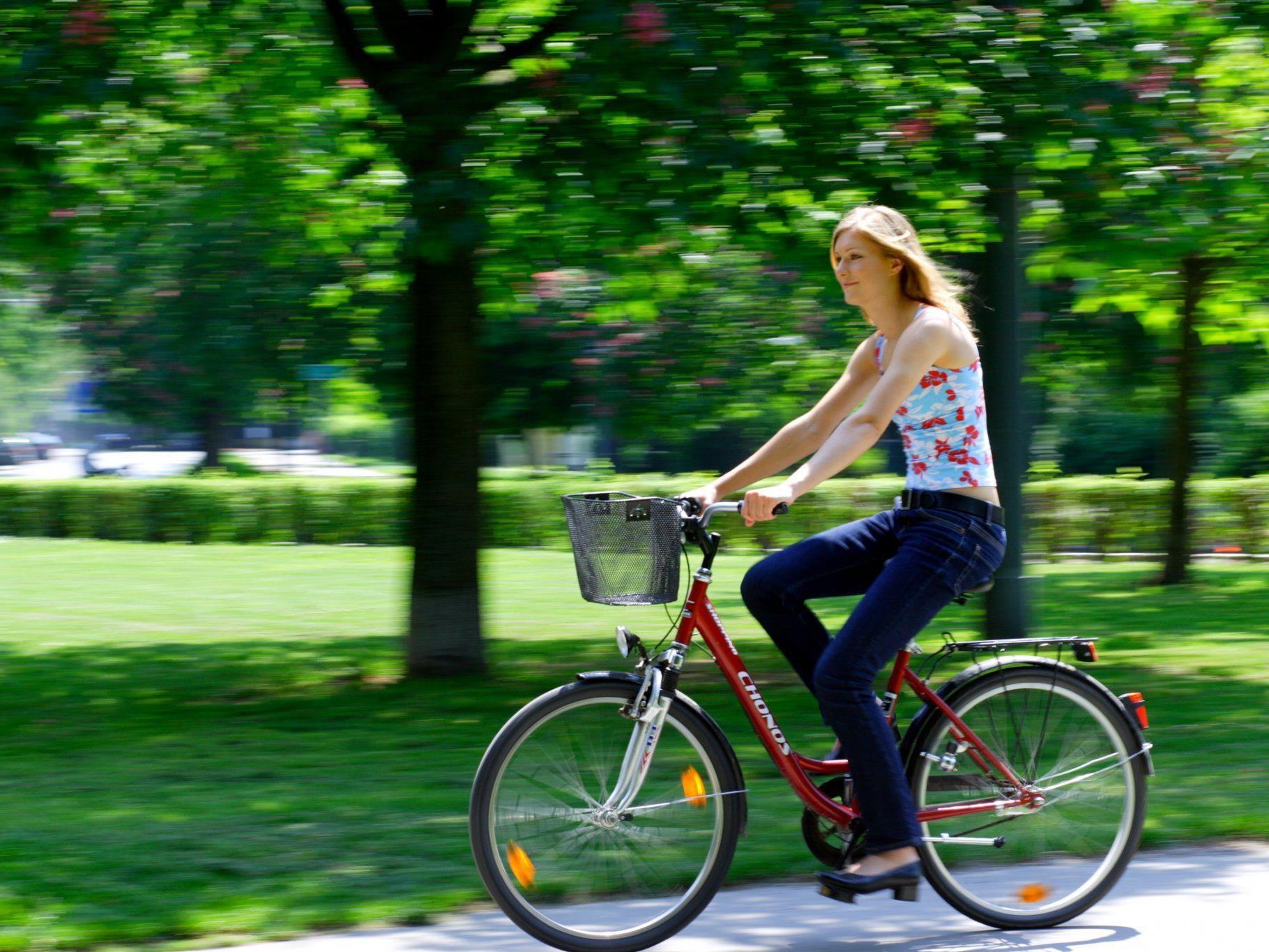 So viele Radfahrer wie 2011 gab es in Wien noch nie.