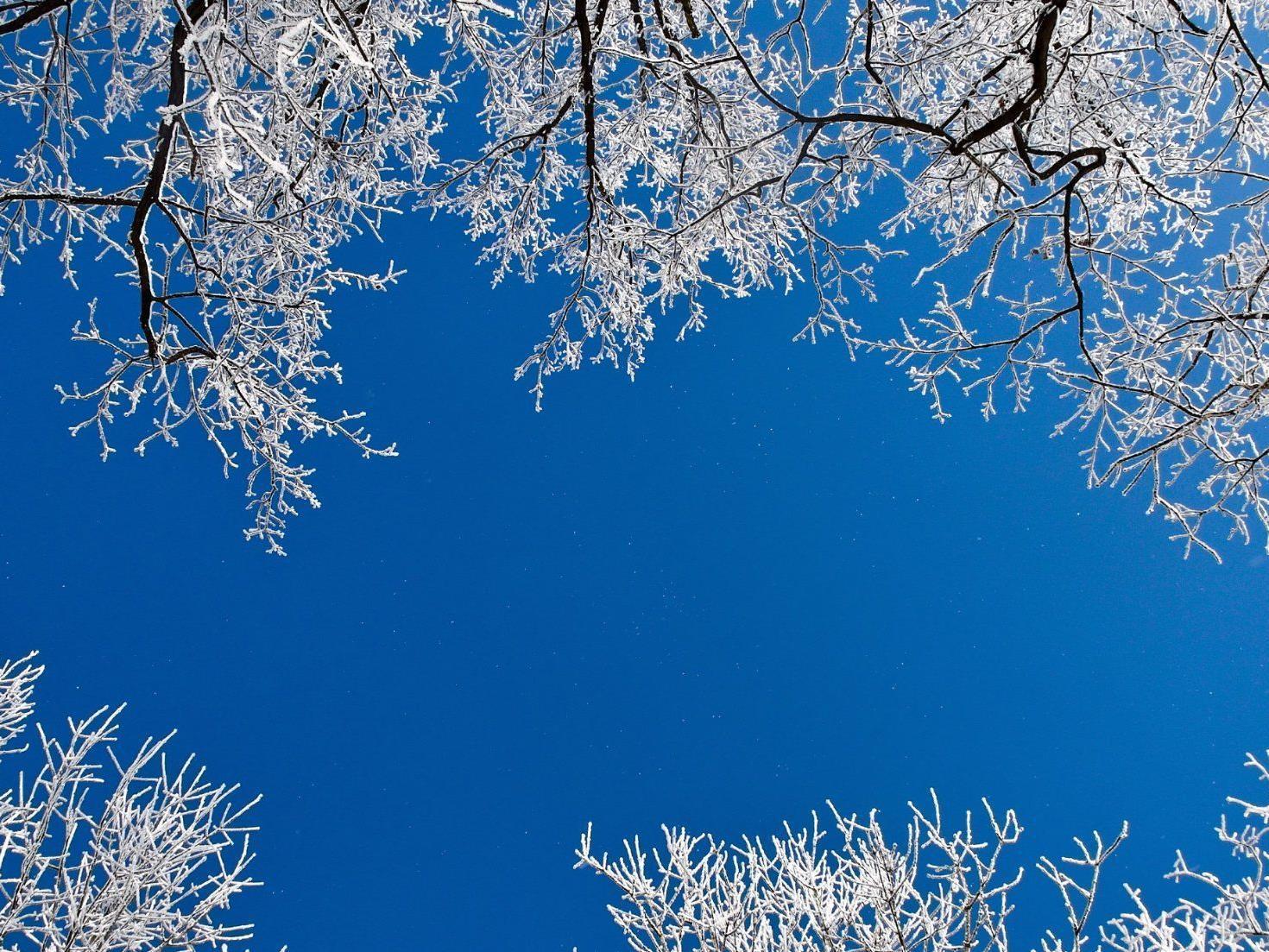 Ab Dienstag muss man in Wien wieder mit Schneefall rechnen.