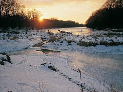 In den Donauauen war es zu Eissprengungen gekommen - sehr zum Unmut von Umweltschützern