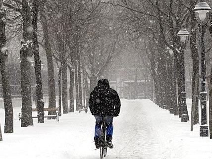 Auch Radfahrer dürfen sich bei Schnee in Wien über geräumte Wege freuen