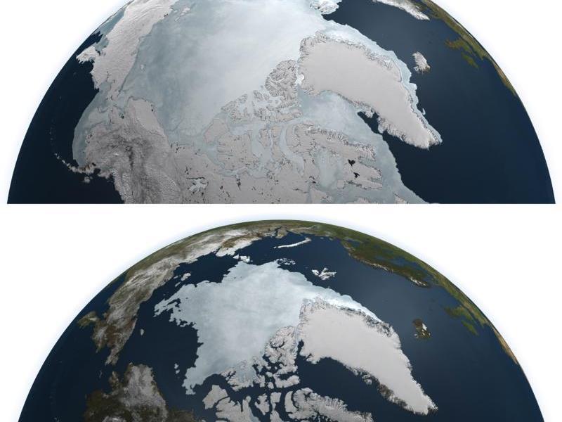 """""""Eisfreier Ozean schon in weniger als 20 Jahren möglich"""""""