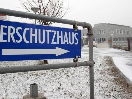 Das Wiener Tierschutzhaus ist mit dem angebotenen Grundstück der Stadt Wien nicht zufrieden.