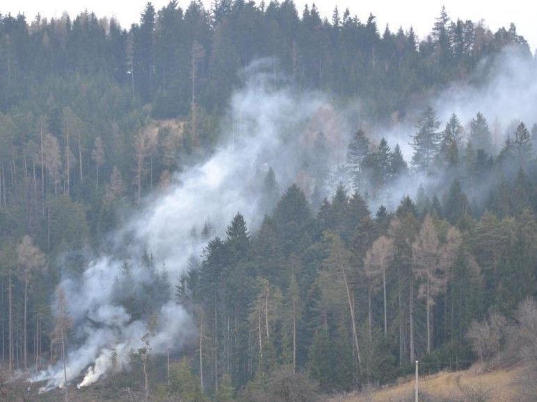 Waldbrand: Sechs Feuerwehren wurden zu einem Einsatz in Steyersberg gerufen.