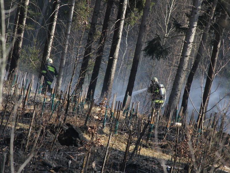 Die Feuerwehr Gunskirchen stand am Mittwoch mit 19 Kräften mehr als zwei Stunden lang im Einsatz.