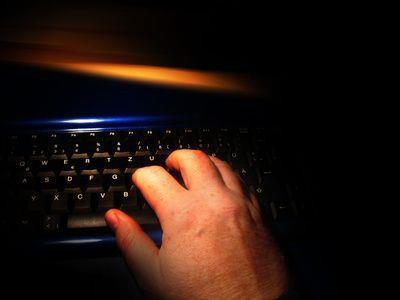 Mindestens 58 Kunden in Österreich warteten vergeblich auf die Waren, die sie beim Internet-Betrüger bestellt hatten.