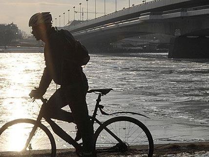 Ein Radfahrer genießt nahe der Reichsbrücke die ersten Sonnenstrahlen - hoffentlich mit einem voll funktionellen Fahrrad