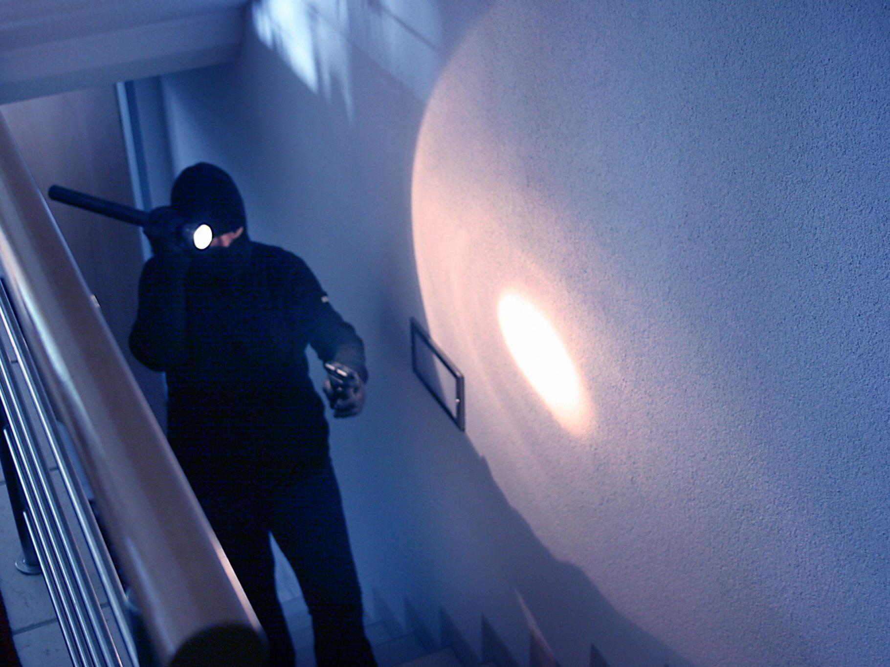 Die Einbrecher konnten dank einer aufmerksamen Zeugin von der Polizei geschnappt werden.