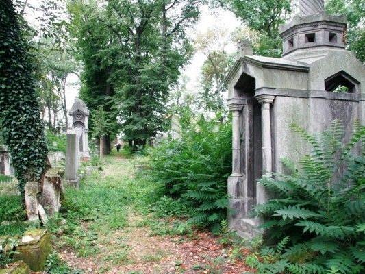 Erhaltenswertes Kulturgut: Der Jüdische Friedhof Währing.