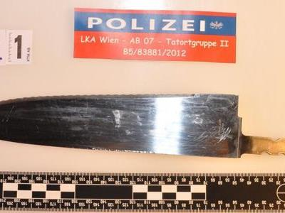 Eines der Messer der Frau, das der Polizist in Fünfhaus mit Schüssen abwehrte