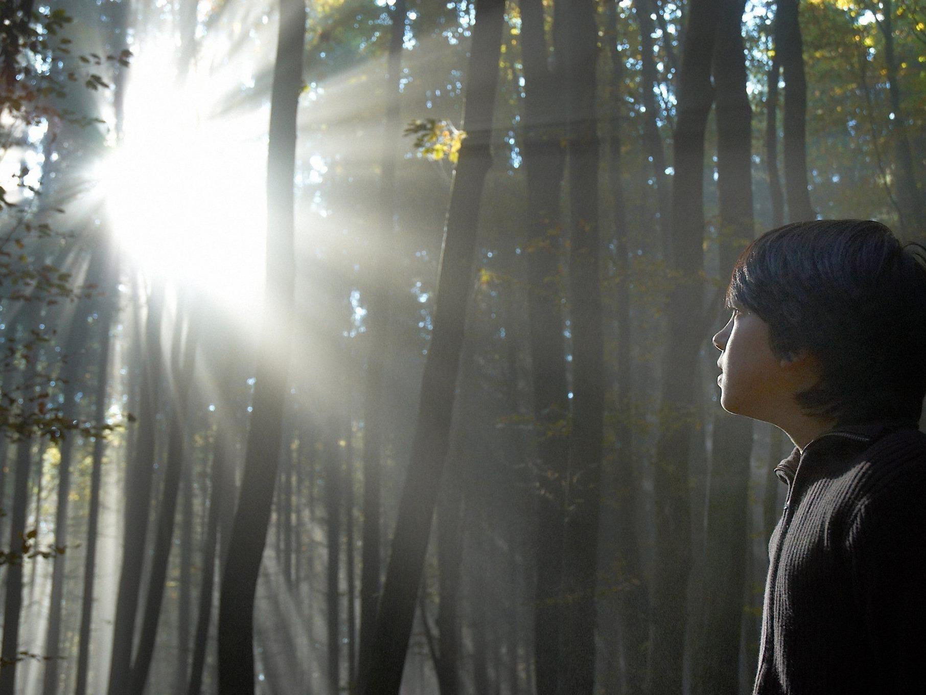Alle Geheimnisse des Waldes gibt es beim Waldcamp am Steinhof zu entdecken