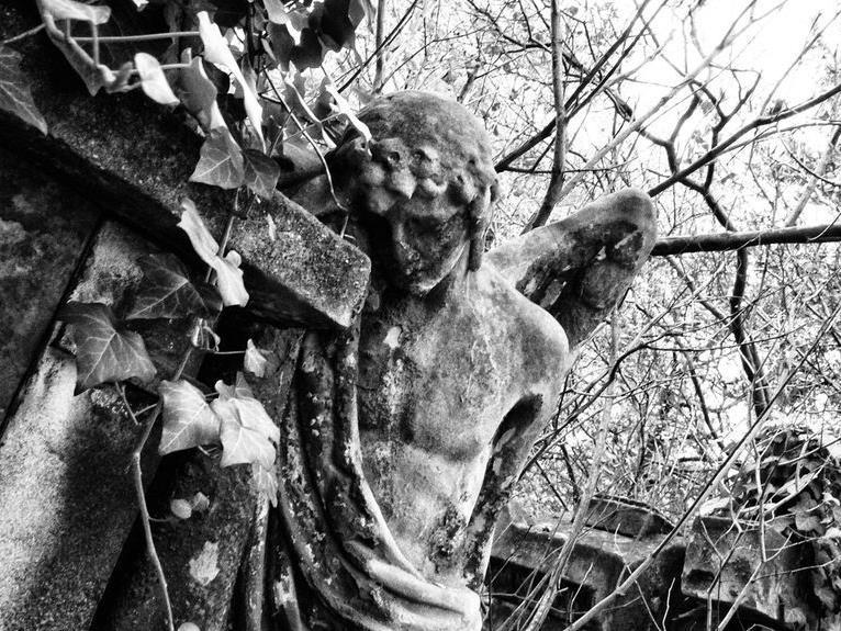 Neben dem Mozartgrab finden sich jede Menge versteckter Orte auf dem Friedhof St. Marx