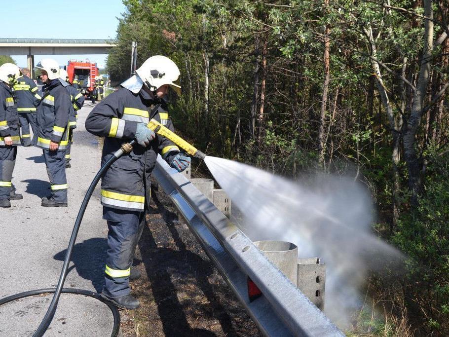 Viel zu löschen hatten die Feuerwehren bei den Flurbränden in Niederösterreich bei Natschbach und Kleinfeld