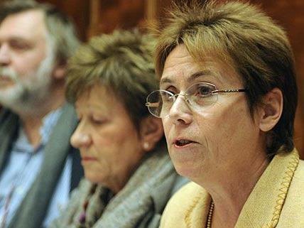Diese Kommission untersucht die Vorfälle am Wilhelminenberg - und zieht Bilanz