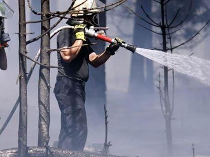 Am Sonntagnachmittag waren 250 Feuerwehrleute im Einsatz.