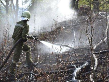 Die Löscharbeiten nach dem Flurbrand in Gutenstein am Sonntag gestalteten sich schwierig.