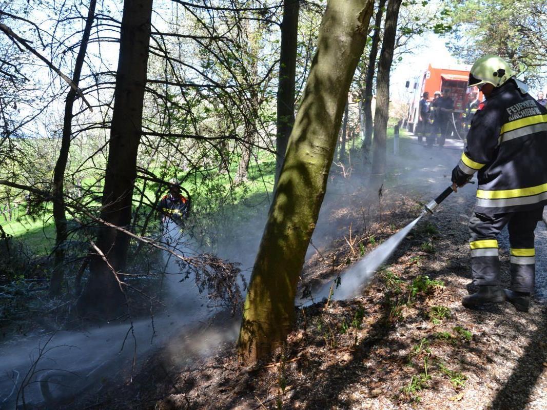 40 Mann löschten einen erneuten Waldbrand in Niederösterreich bei Neunkirchen