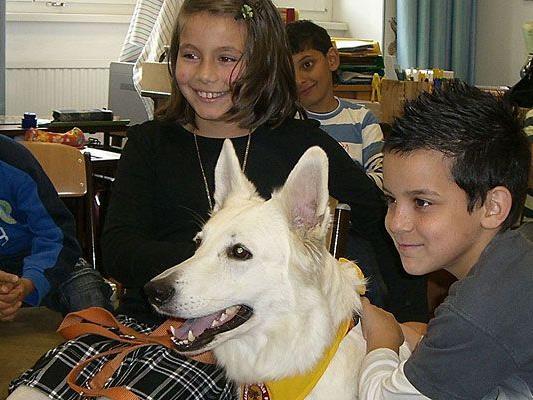 Hunde in der Schule machen Kindern nicht nur Spaß, sondern auch Sinn
