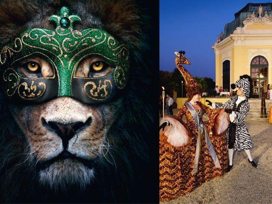 Bei der Langen Sommernacht im Tiergarten Schönbrunn erleben Sie Tiere auch in der Nacht