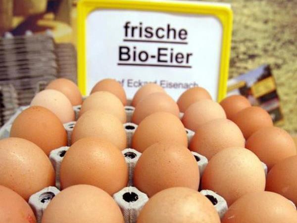 Wiener Spezialitätenproduzent Wojnar stellt auf Freilandeier um
