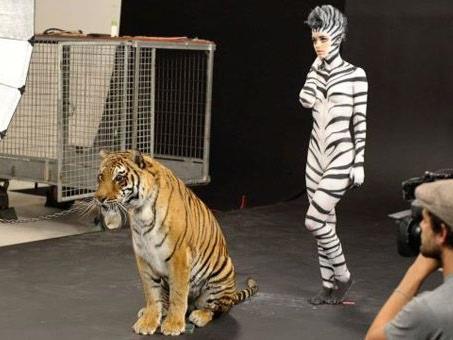 Bei der letzten Folge von Germany's Next Topmodel musste Lisa die Sendung nach einem Nackt-Shooting mit wilden Tieren verlassen.