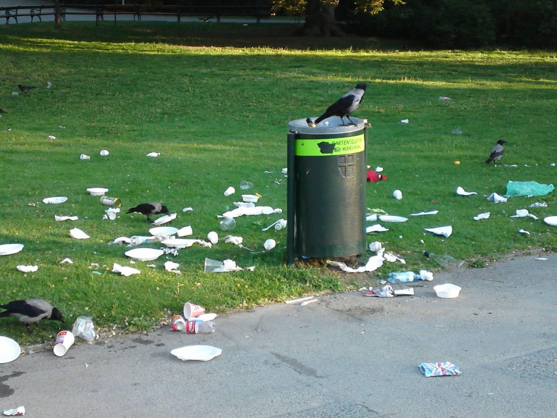 Nicht die Parkbesucher waren es, die ihren Müll neben den Mistkübeln verteilt haben, sondern die Krähen.