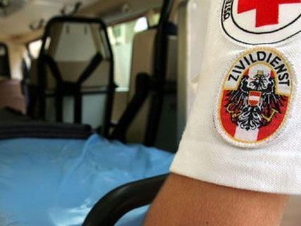 Der Radfahrer aus Wien wurde schwer verletzt dabei.